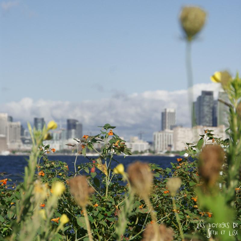 pvt canada toronto couple blog iles island ferry voyage tour du monde fleur downtown flou nature