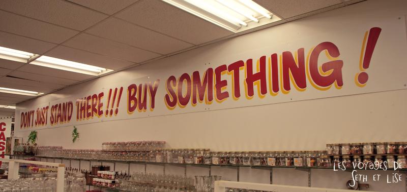 blog photo canada toronto pvt humour whv honest ed bargain vintage shop buy