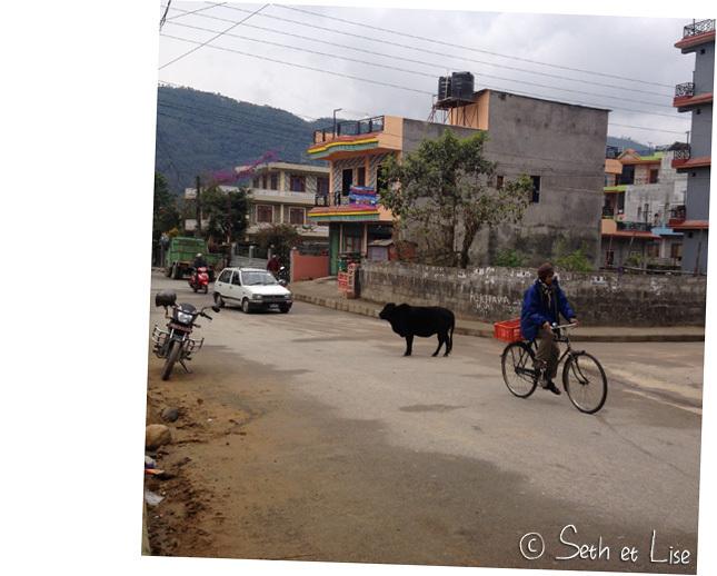 Les petites choses insolites de Pokhara